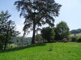 ferme rénovée au Pays Basque, environnement calme - Mauleon-Licharre vacation rentals