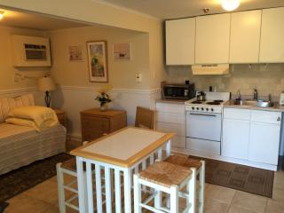 Nice Resort with Internet Access and Dishwasher - Westhampton vacation rentals