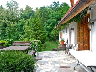 Beautiful 2 bedroom Farmhouse Barn in Ptuj - Ptuj vacation rentals