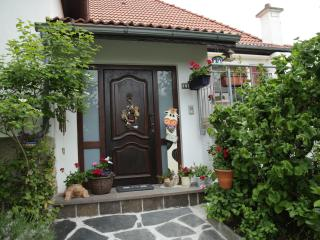 homely 1 bedroom close to nature and city - Frisange vacation rentals
