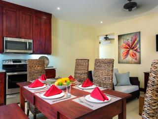 Beautiful 2 bedroom Apartment in Las Catalinas - Las Catalinas vacation rentals