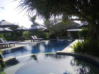 One bedroom private and spacious villas - Canggu vacation rentals