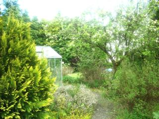 Charming 3 bedroom Cottage in Moffat with Long Term Rentals Allowed - Moffat vacation rentals