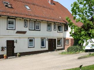 Urlaub auf dem Lindnerhof - Olivia - Osterode am Harz vacation rentals