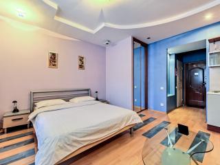 Spacious Studio - Nevsky - Saint Petersburg vacation rentals