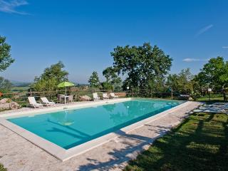 Villa with large salt pool 30 miles from Rome - Magliano Sabina vacation rentals