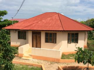 Nice House with Internet Access and Parking - Nungwi vacation rentals