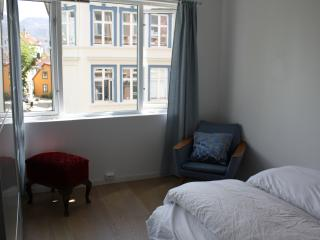 Cosy apartment in central, picturesque area - Bergen vacation rentals
