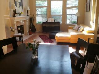 4+bedroom Modern Executive Home - Danville vacation rentals