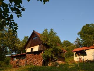 Carpathian Cottage - Brad vacation rentals