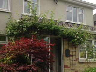Glendale House - Cork vacation rentals