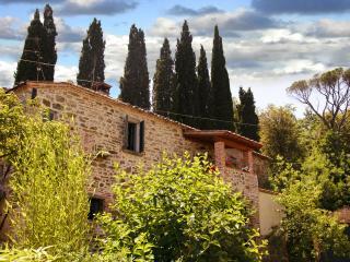 Siena e dintorni: tra arte e gastronomia - Rigomagno vacation rentals