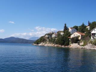 BIGOVA AP - large, seafront, 1-bed apt with view - Kotor vacation rentals