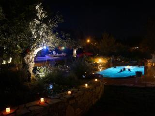 Maison Corse (août uniquement)  Piscine chaufée - Haute-Corse vacation rentals
