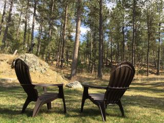 Nice 3 bedroom House in Custer - Custer vacation rentals