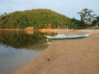 Nice B&B with Internet Access and Parking - Busuanga vacation rentals