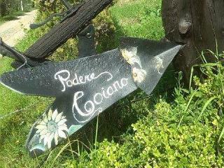 Azienda Agrituristica Podere Coiano - Volterra vacation rentals