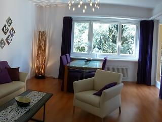 Bright 2 bedroom Apartment in Minusio - Minusio vacation rentals