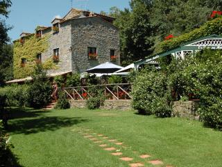 Nice Farmhouse Barn with Internet Access and Tennis Court - Bolsena vacation rentals
