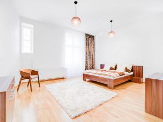Pontiff Apartment - Brno vacation rentals