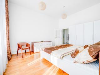 Beautiful 2 bedroom Condo in Brno with Internet Access - Brno vacation rentals