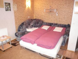 Romantic 1 bedroom Private room in Mellenbach-Glasbach with Internet Access - Mellenbach-Glasbach vacation rentals