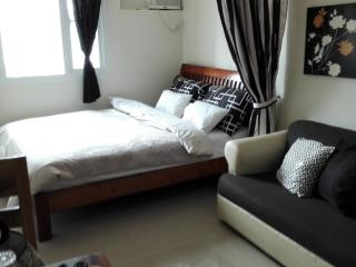 Striking Studio in Makati - Makati vacation rentals