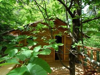 Cévennes Insolites: La Cabane de Peyrolles - Saint-Jean-du-Gard vacation rentals
