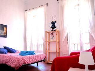 Spacious Apartment on Plaza de la Merced. - Malaga vacation rentals