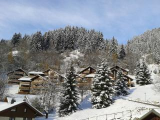 Fantastic ski location - Champagny-en-Vanoise vacation rentals