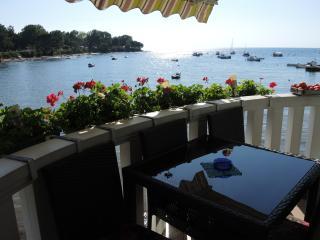 AS1 XL Apartment on the sea coast - Savudrija vacation rentals