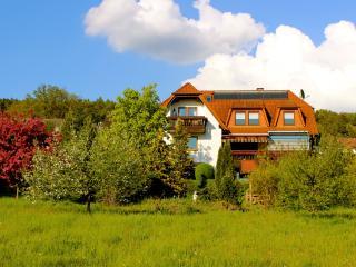 Komfortwohnung mit viel Platz! - Bad Bocklet vacation rentals