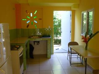 close to the beach in big garden apartment - Bocas Town vacation rentals