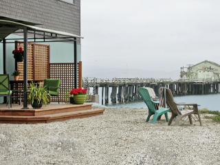 Exotic Tropical MAVERICKS Beachfront LOFT! - Half Moon Bay vacation rentals