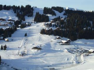 Ski in or ski out with spectacular views - Manigod vacation rentals