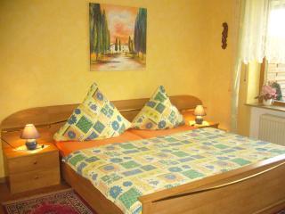 Appartement für zwei und Südterrasse! - Bad Bocklet vacation rentals