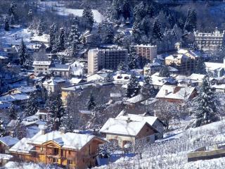 Le Royal à 100m de la télécabine wifi casier à ski - Brides-les-Bains vacation rentals