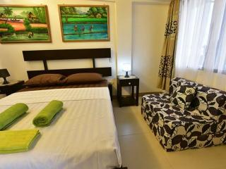 Nice Studio with Internet Access and A/C - Boracay vacation rentals