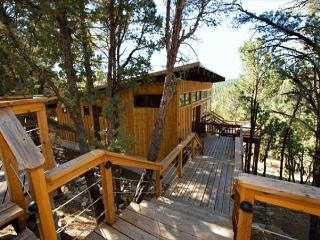 Neeley Mountain House has a spectacular view from the deck area. - Alto vacation rentals