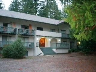 #72 Great little condo near skiing and hiking! - Glacier vacation rentals