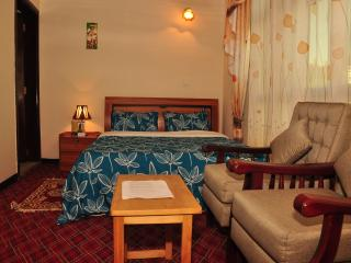 Cozy 3 bedroom Bed and Breakfast in Addis Ababa with Internet Access - Addis Ababa vacation rentals