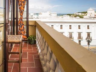 Old San Juan Historic Apt. on Main Plaza: 4-NT MIN - San Juan vacation rentals