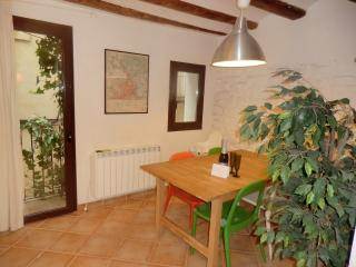 Apartment in the heart of Tremp, Catalonia - Tremp vacation rentals