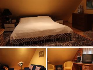Beautiful Villa for Family/couples - Moletai vacation rentals
