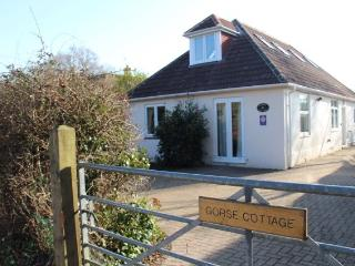 Nice Cottage with Internet Access and Central Heating - Brockenhurst vacation rentals