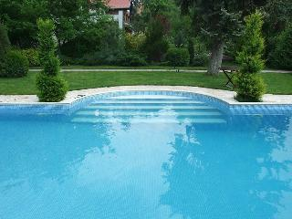 Charming 5 bedroom Villa in Balatonalmadi - Balatonalmadi vacation rentals