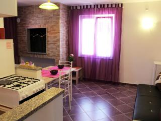 Spacious New Studio for couple/friends - Zadar vacation rentals