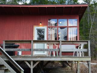 1BR Cabin with sandy beach and boat access - Warren vacation rentals