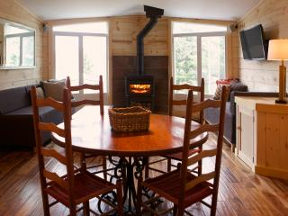 Modern & Cozy Condo w/ Private Sauna & Pool! - Sutton vacation rentals