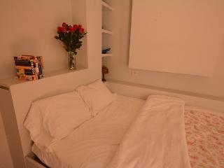 Beautiful 1 Bedrm Apartment in Heart of Paris! - Paris vacation rentals